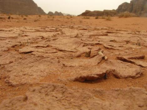 """Wadi Rum - Dried """"mud"""""""