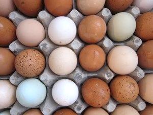 eggs in crate-1.jpg
