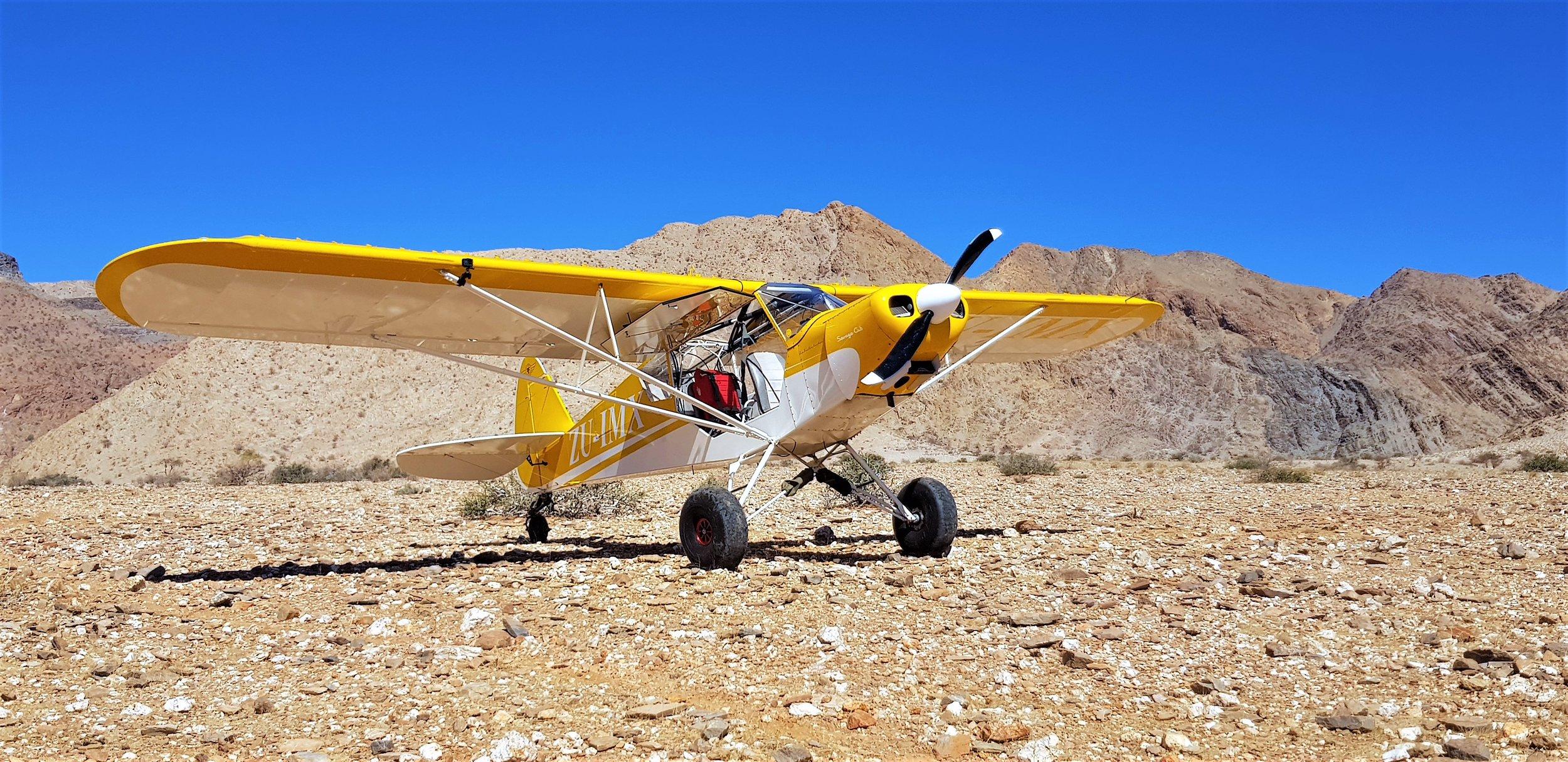 Cub in the Desert.jpg