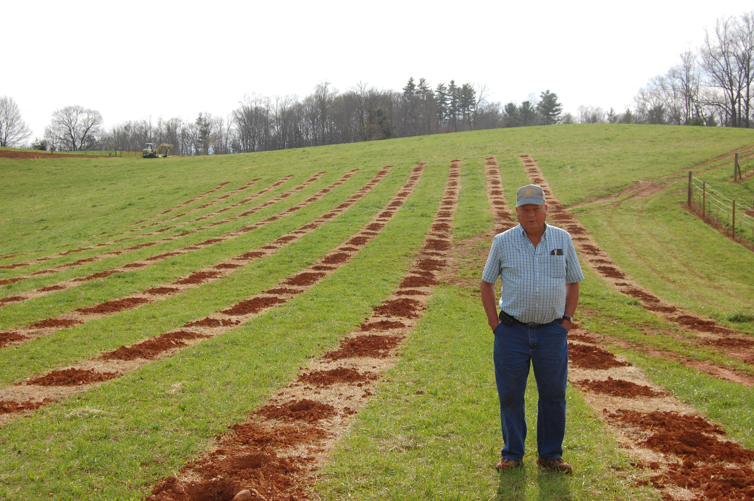 Eddie looking at the new section of the vineyard, pre-planting 2014