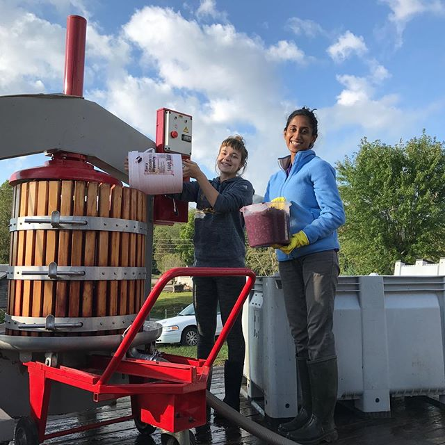 Arianna and Shruthi pressing sangiovese 2017