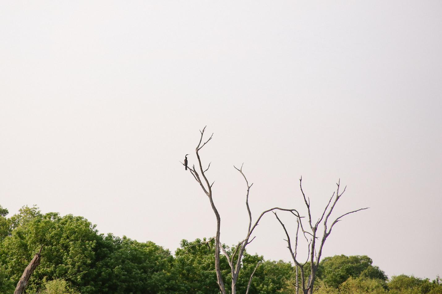 Africa - LindsayBrown -WEB-4053.jpg