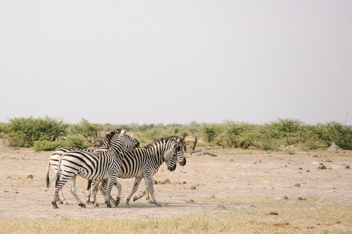 Africa - LindsayBrown -WEB-4203.jpg