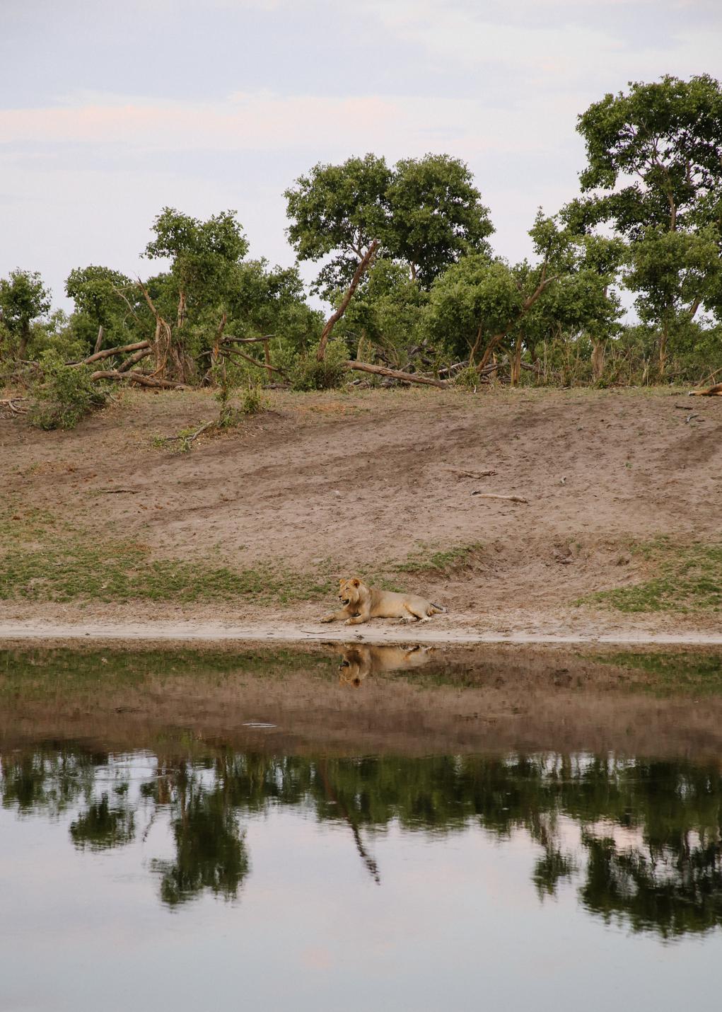 Africa - LindsayBrown -WEB-3982.jpg