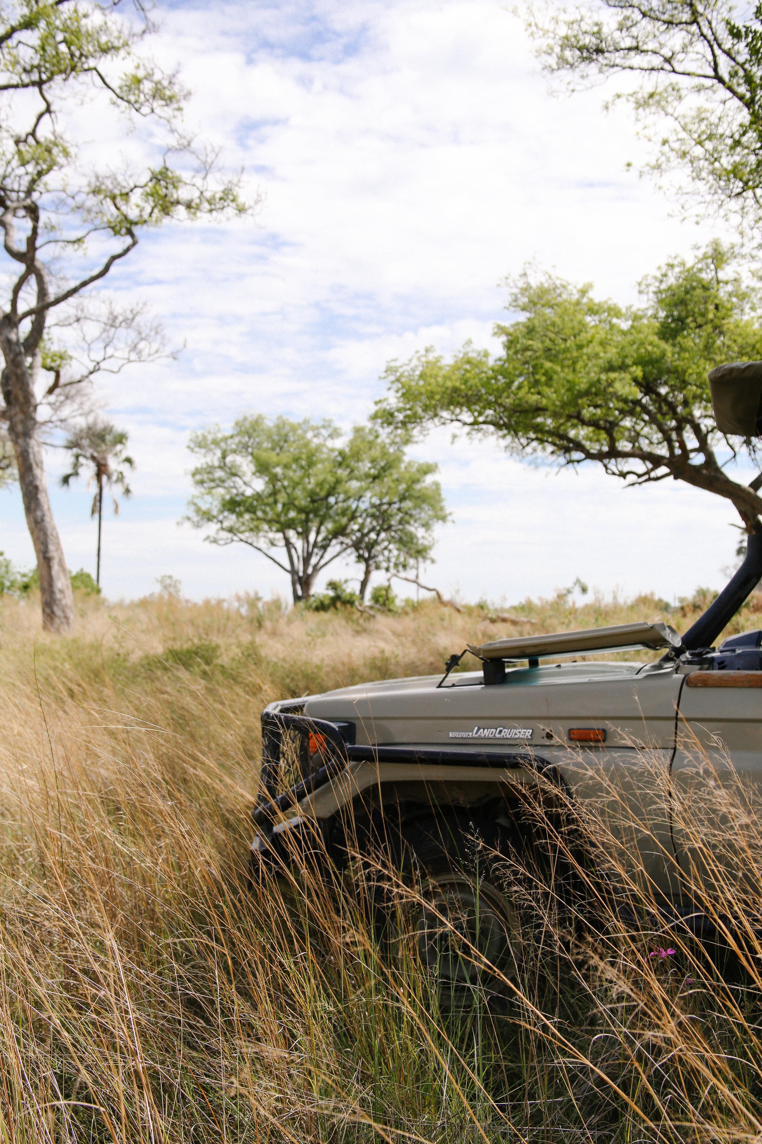 Africa - Lindsaybrown -WEB-6030.jpg