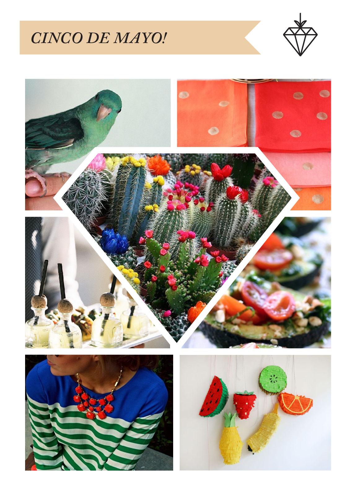 cinco_de_mayo_blog_party.jpg