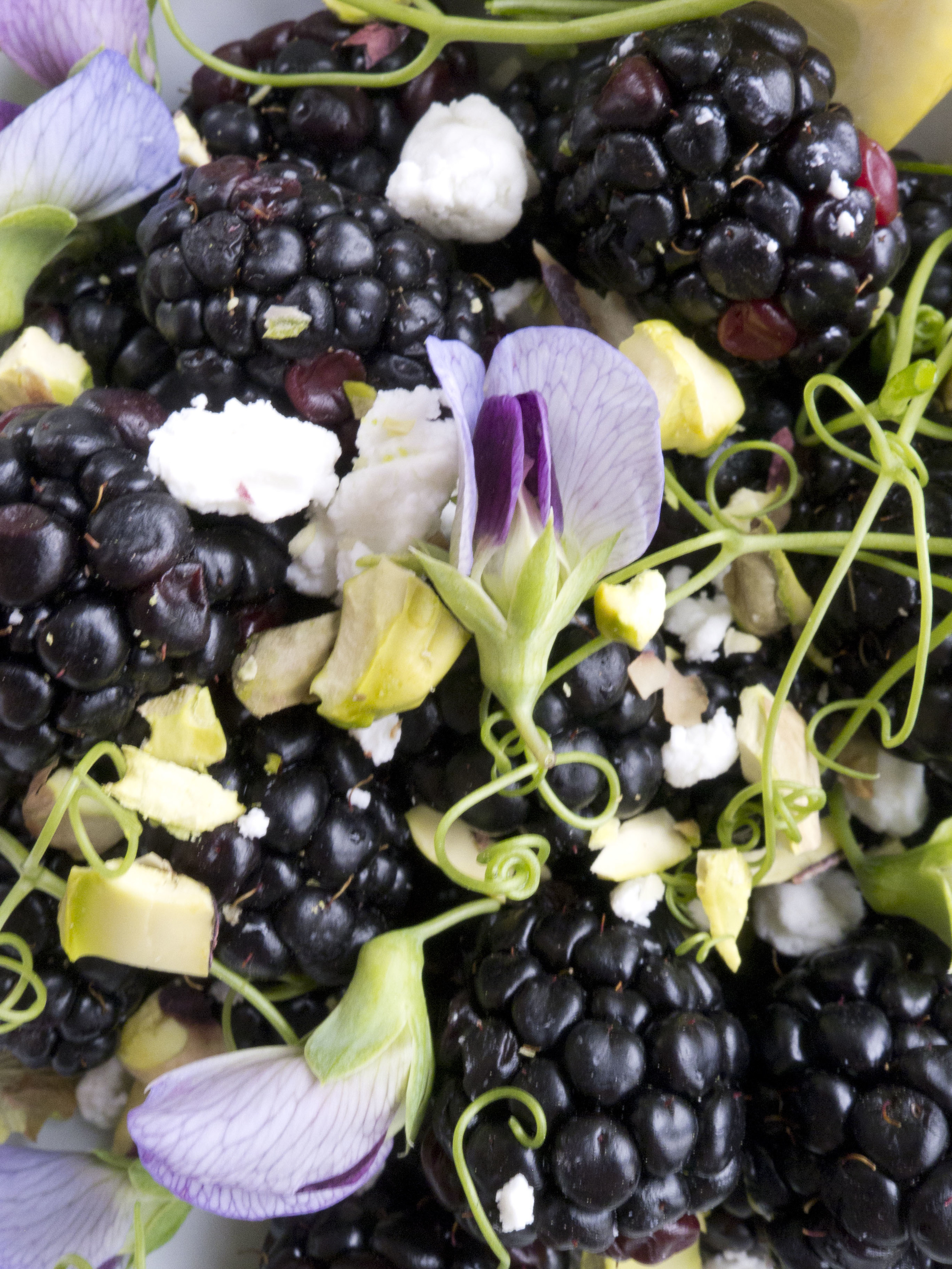 Blackberry Goat Cheese and Pea Shoot Salad