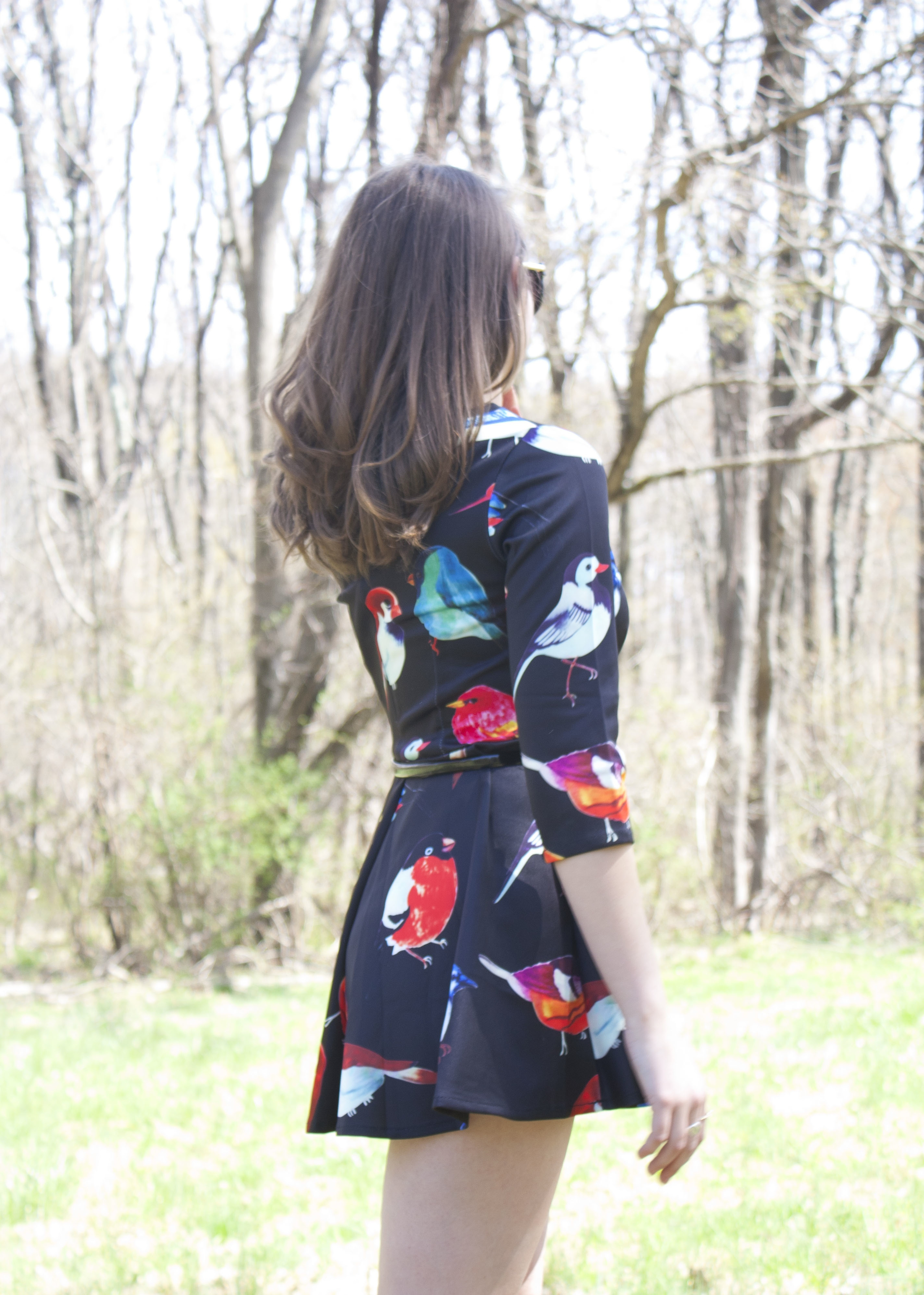Outfit Post: The Bird Print Dress