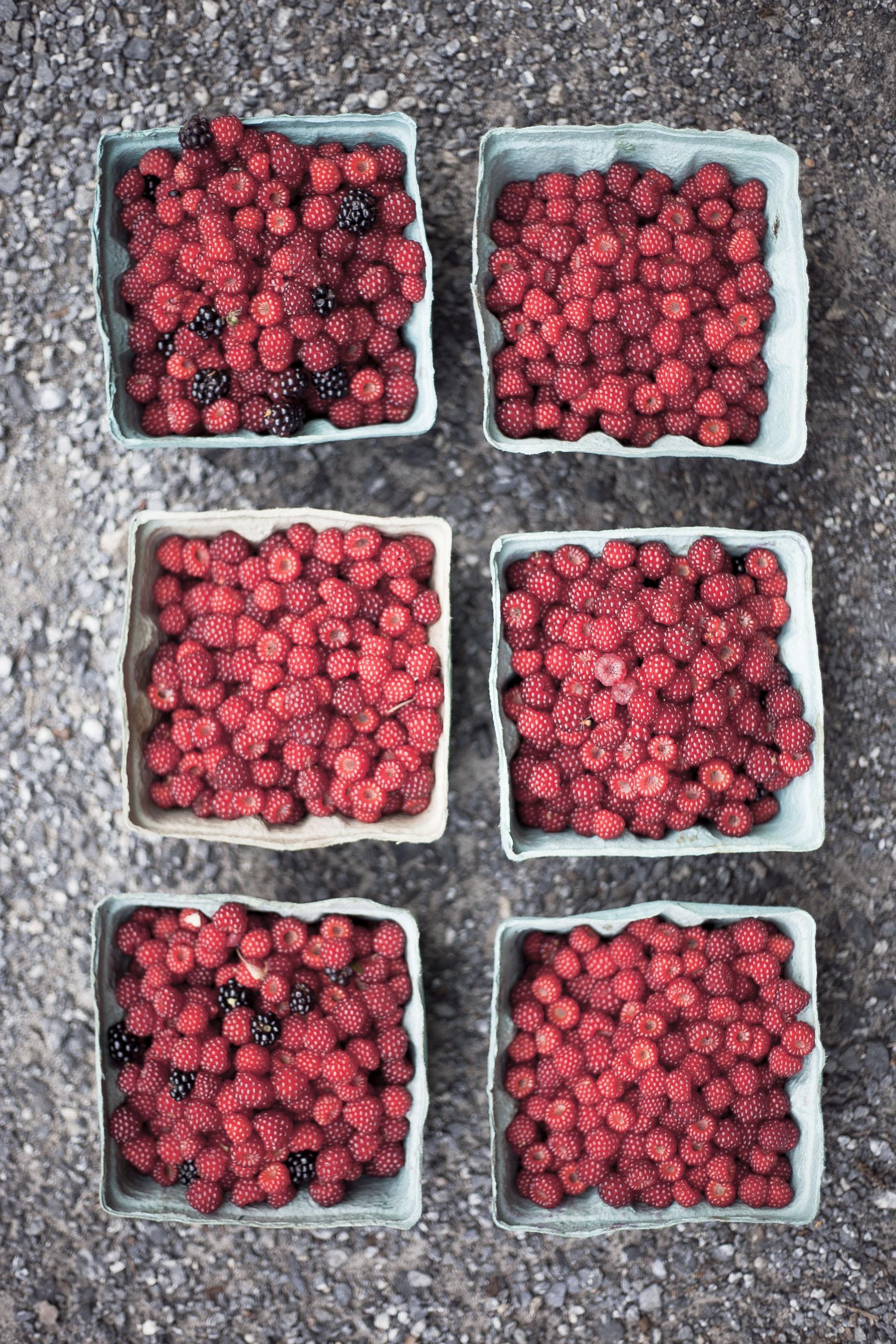 Wineberry Schaum Tortes and Pavlovas