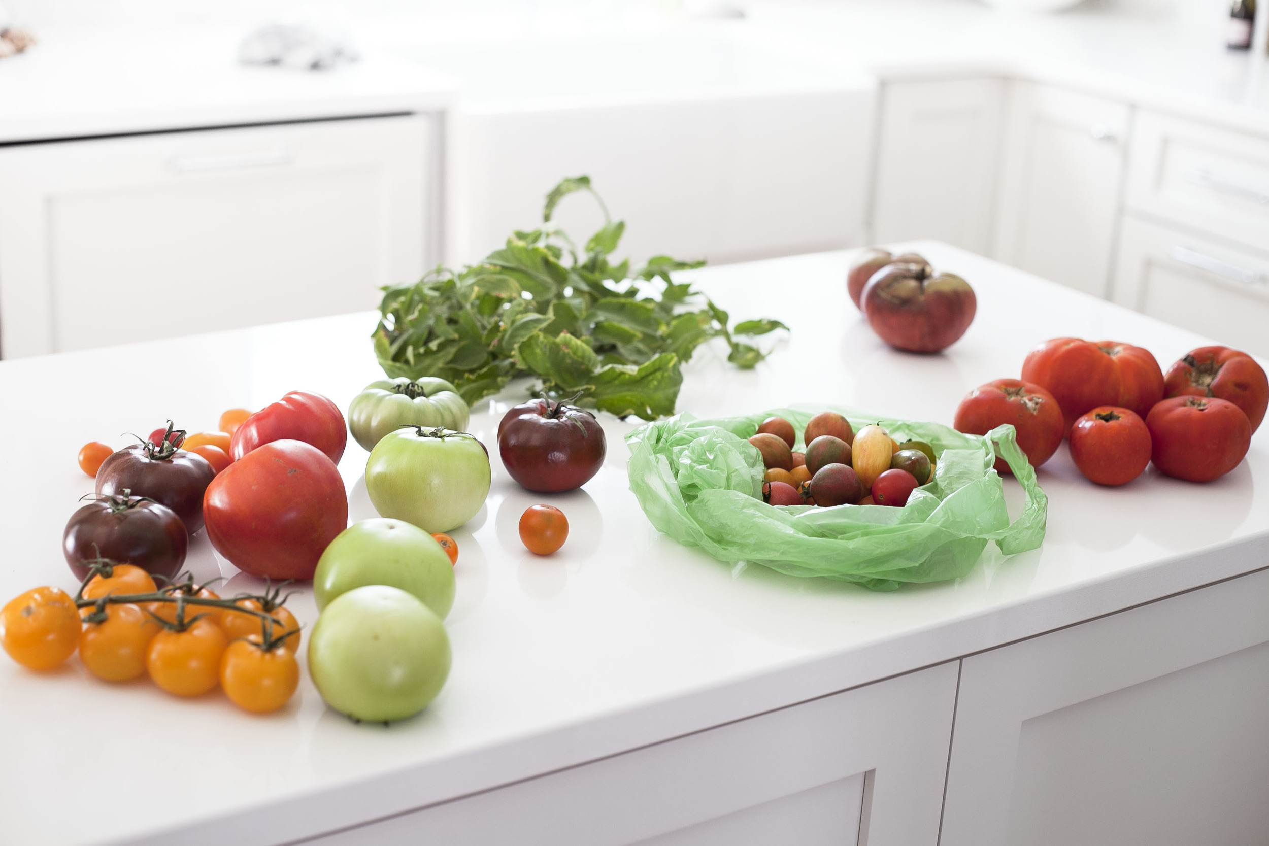 tomatoes: Behind the Scenes: Food Photo-shoots