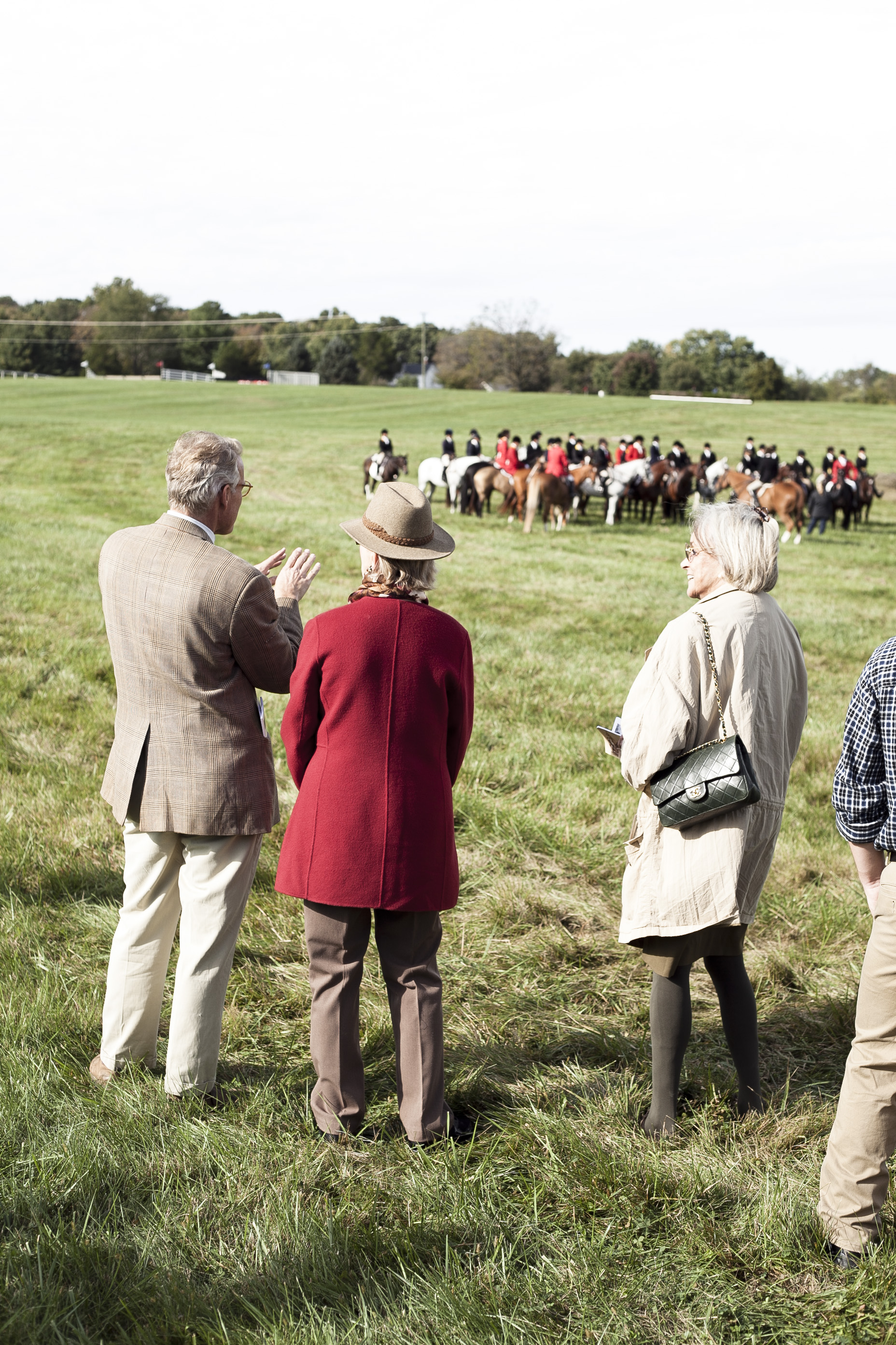 VA fall horse races, middleburg va