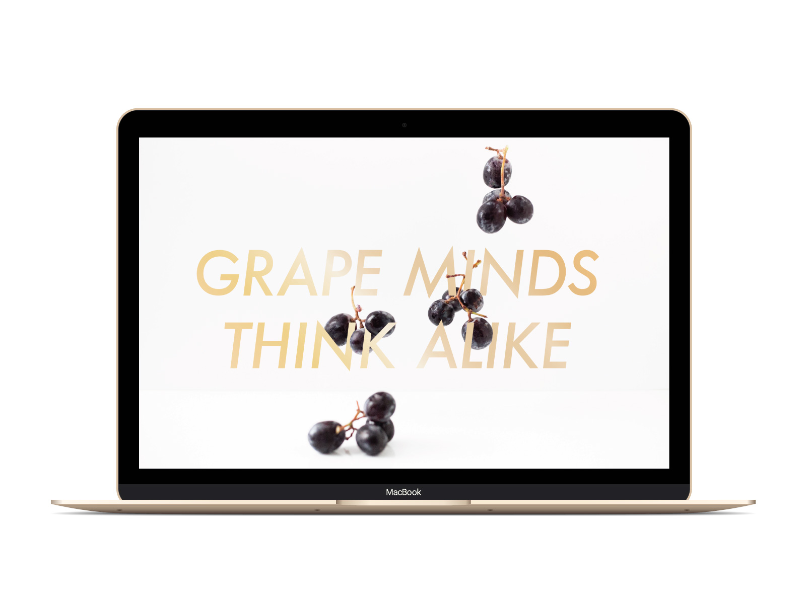 GrapeMinds copy.jpg