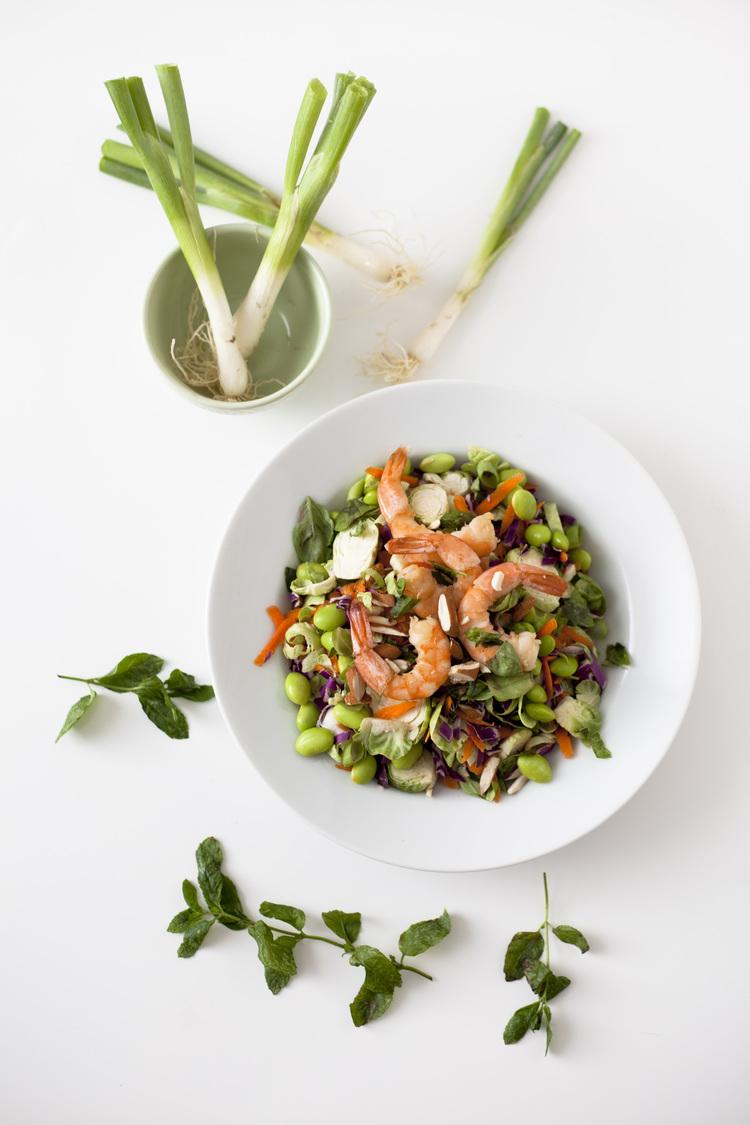 Asian Rainbow Shrimp Salad
