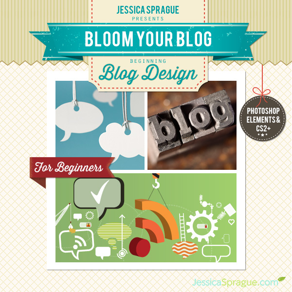 Bloom Your Blog