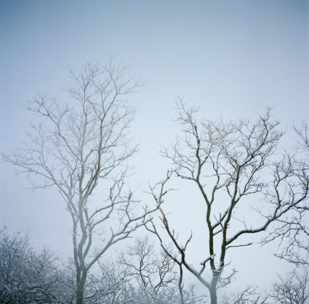 20130201ma_snow_storm-6.jpg