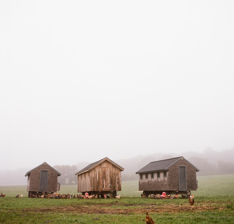 20121001ma_grey_barn_film-5.jpg