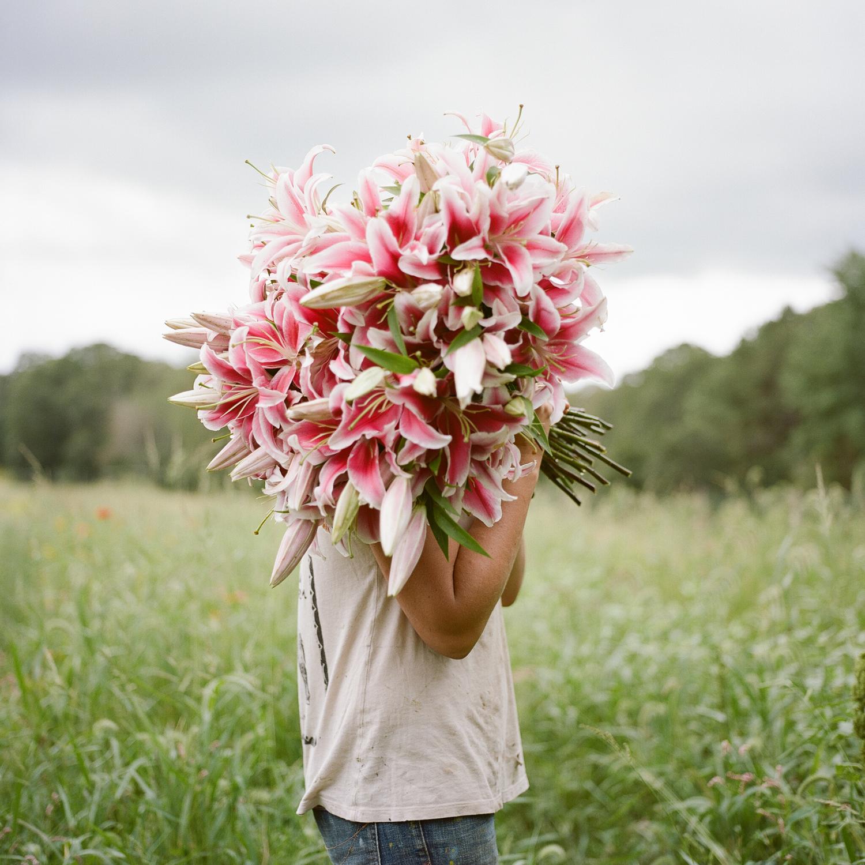 20130905ma_flower_portraits_film-13.jpg