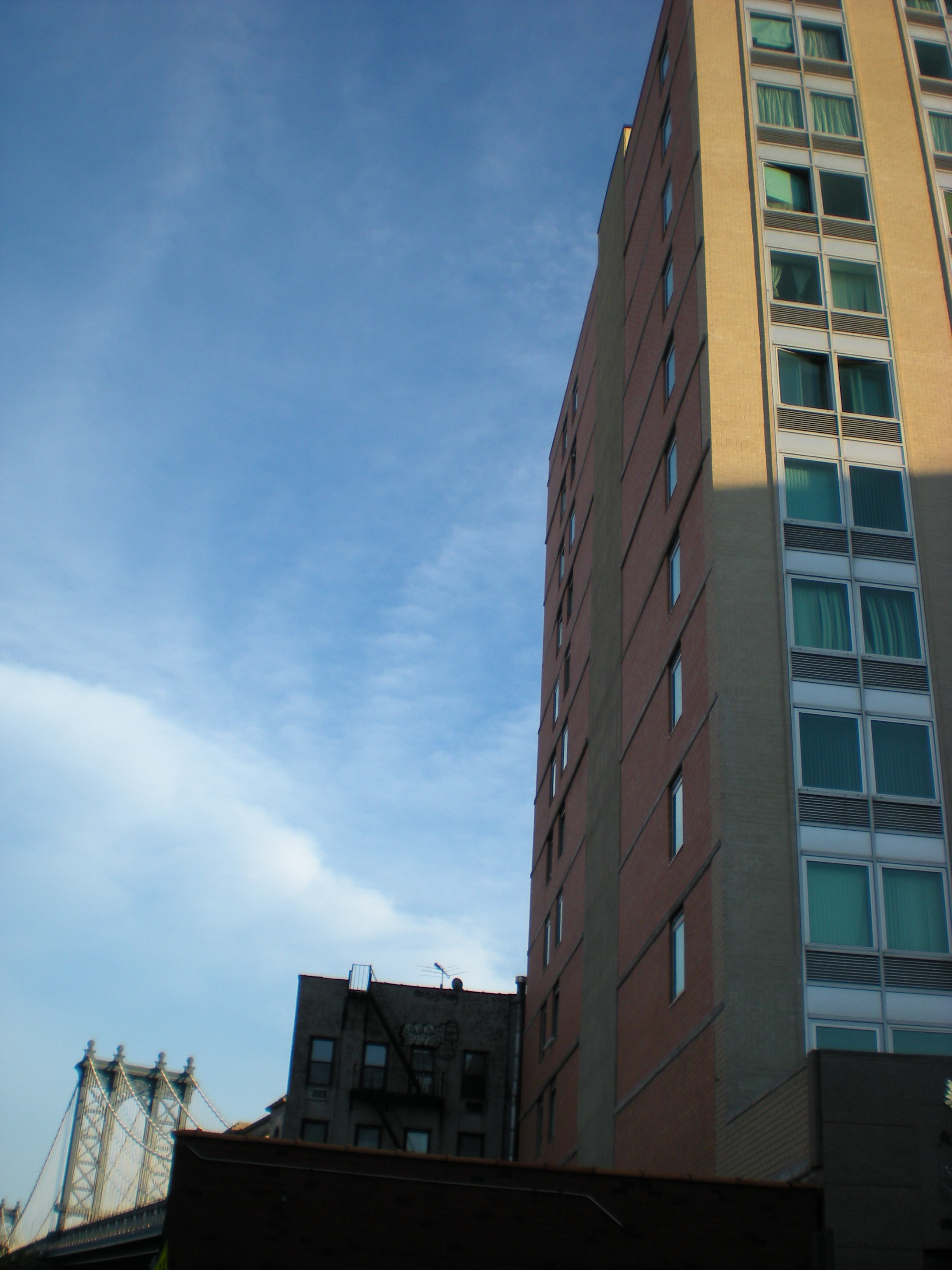 nyc-late july 2010 078.jpg