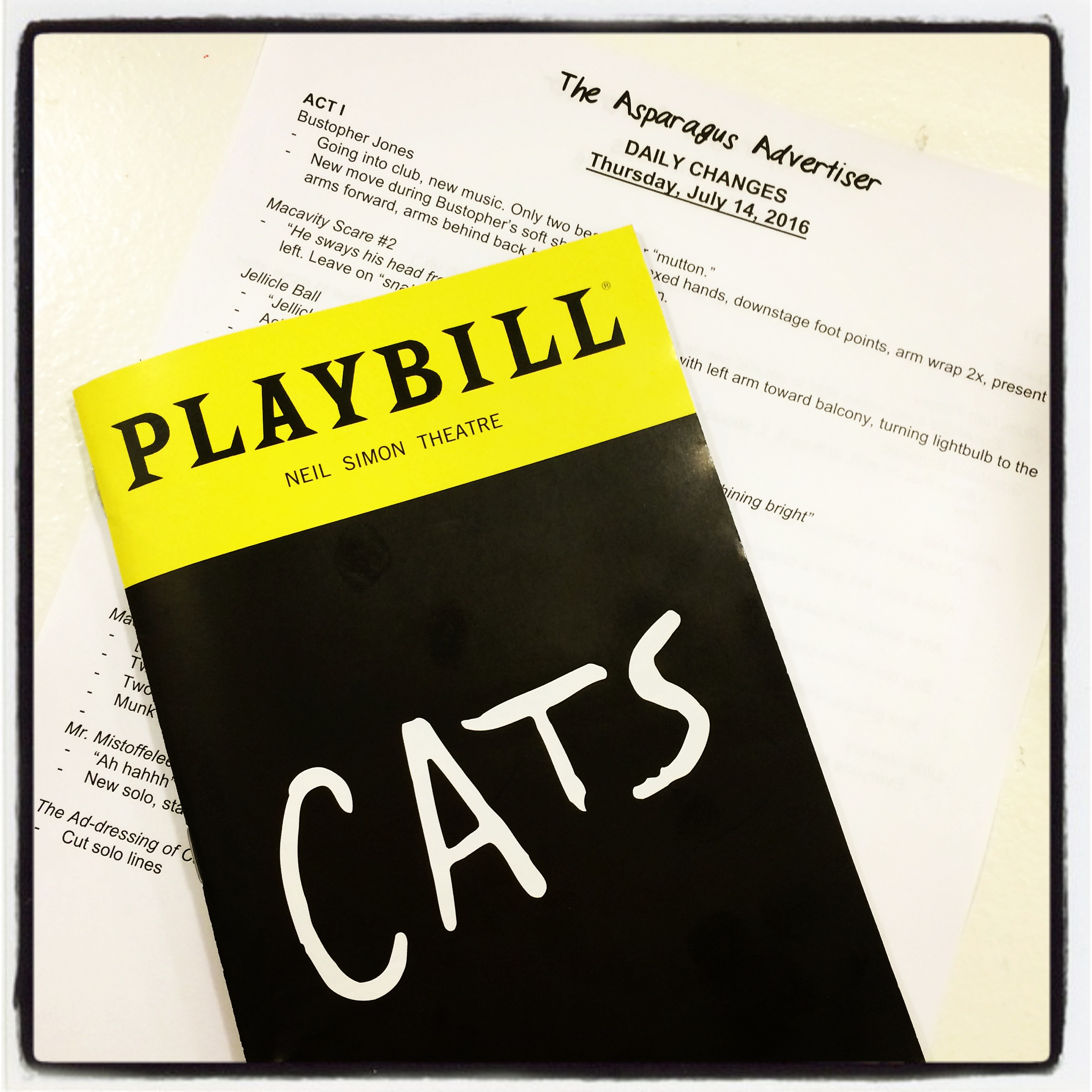 The Daily Change Sheet and First Preview Playbill Cats / Neil Simon Theatre July 14, 2107  photo credit :Christopher Gurr