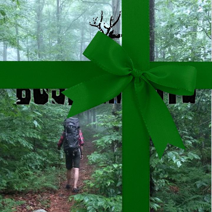 Gift #5 : Bush Smarts
