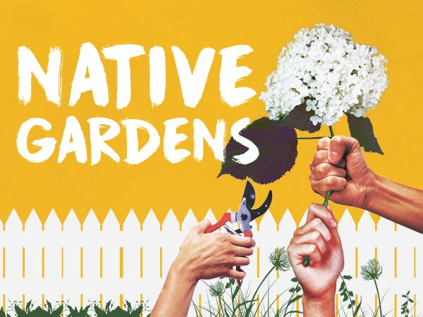 Native Gardens  plays Syracuse Stage February 13 – March 3, 2019