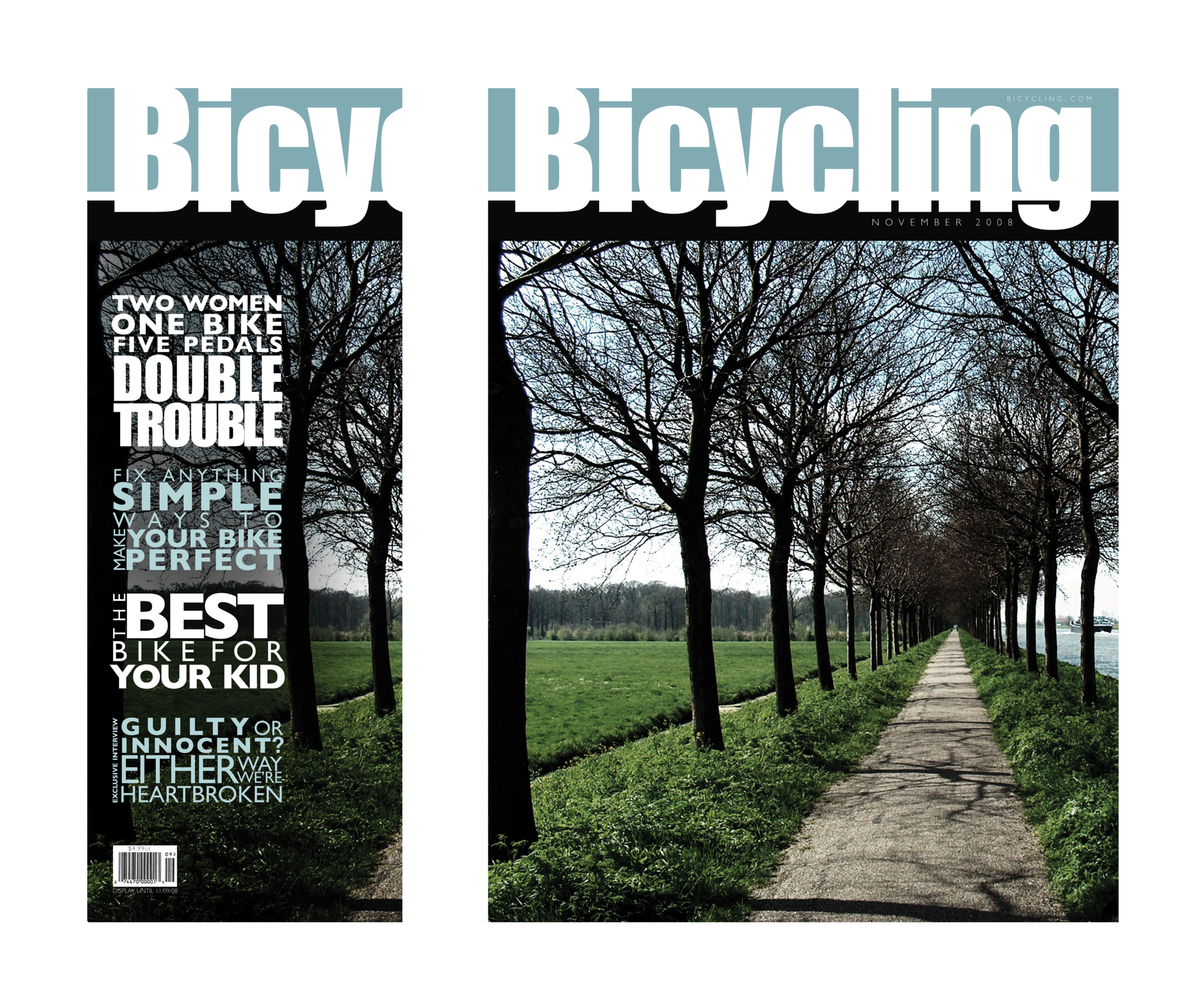 BicyclingCover3.png