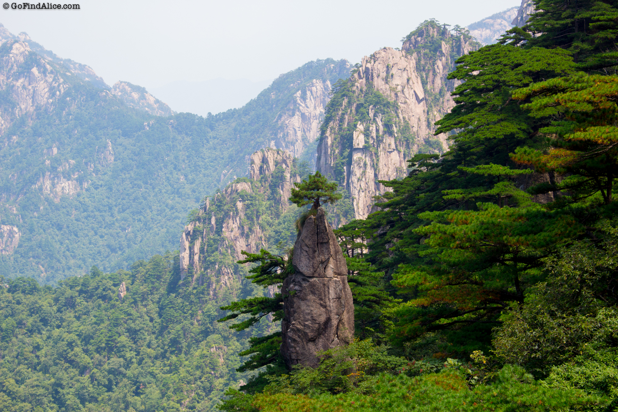 The famous Flower Blooming on a Brush Tip (梦笔生花). It is a granite formation topped by a pine tree.