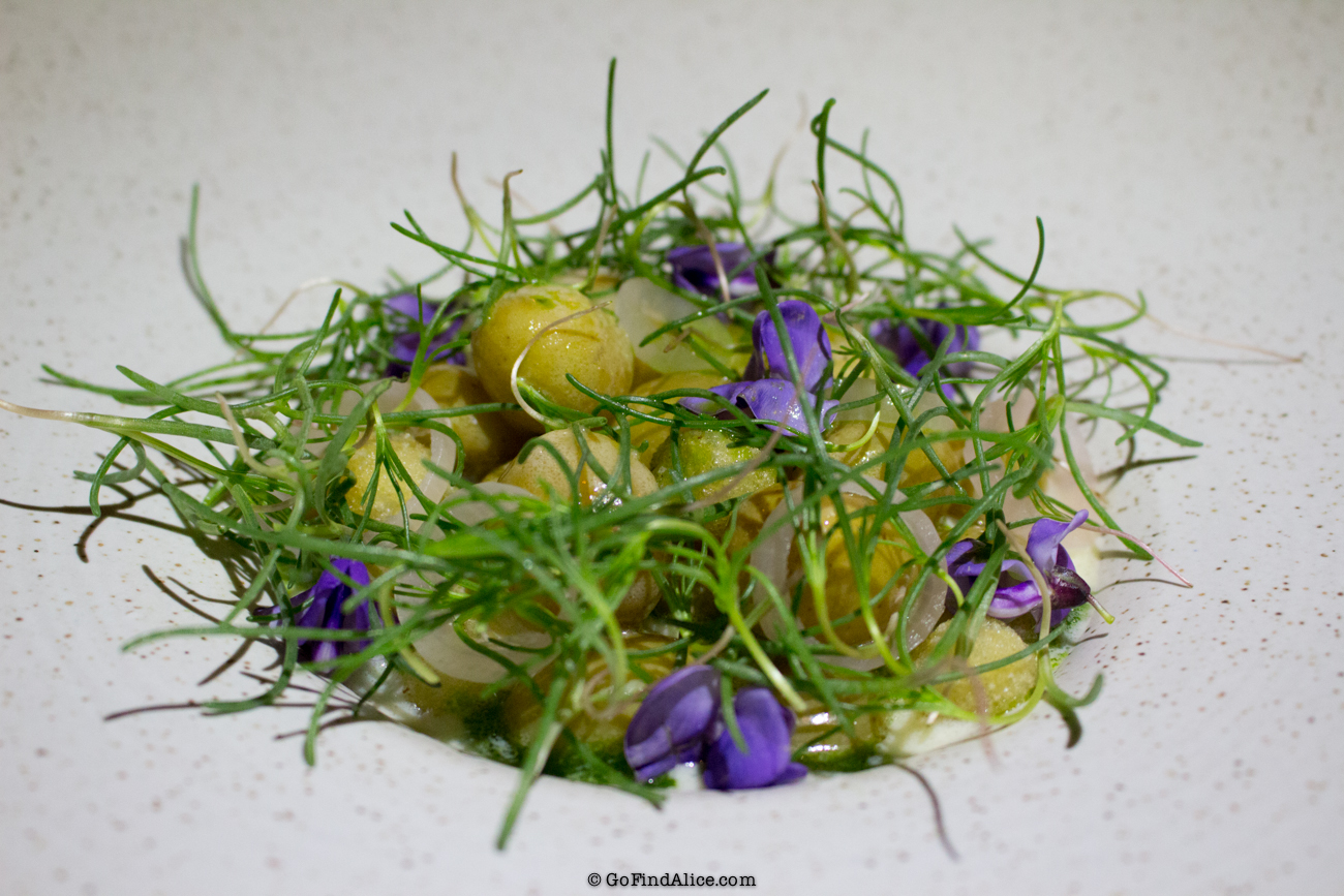 potatoes_redmedicine.jpg