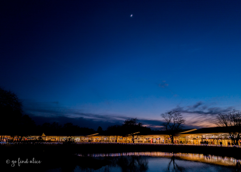 Karuizawa at Night