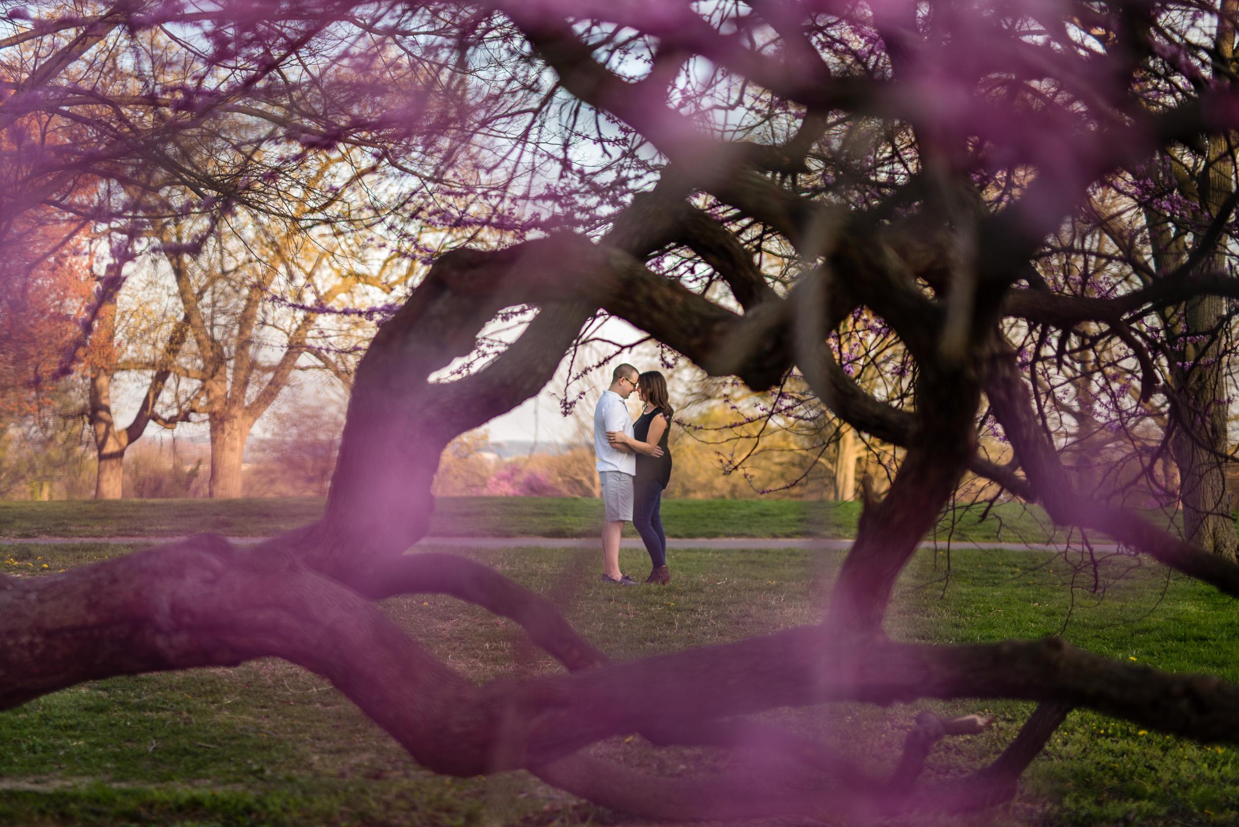 engagement session fiance hug
