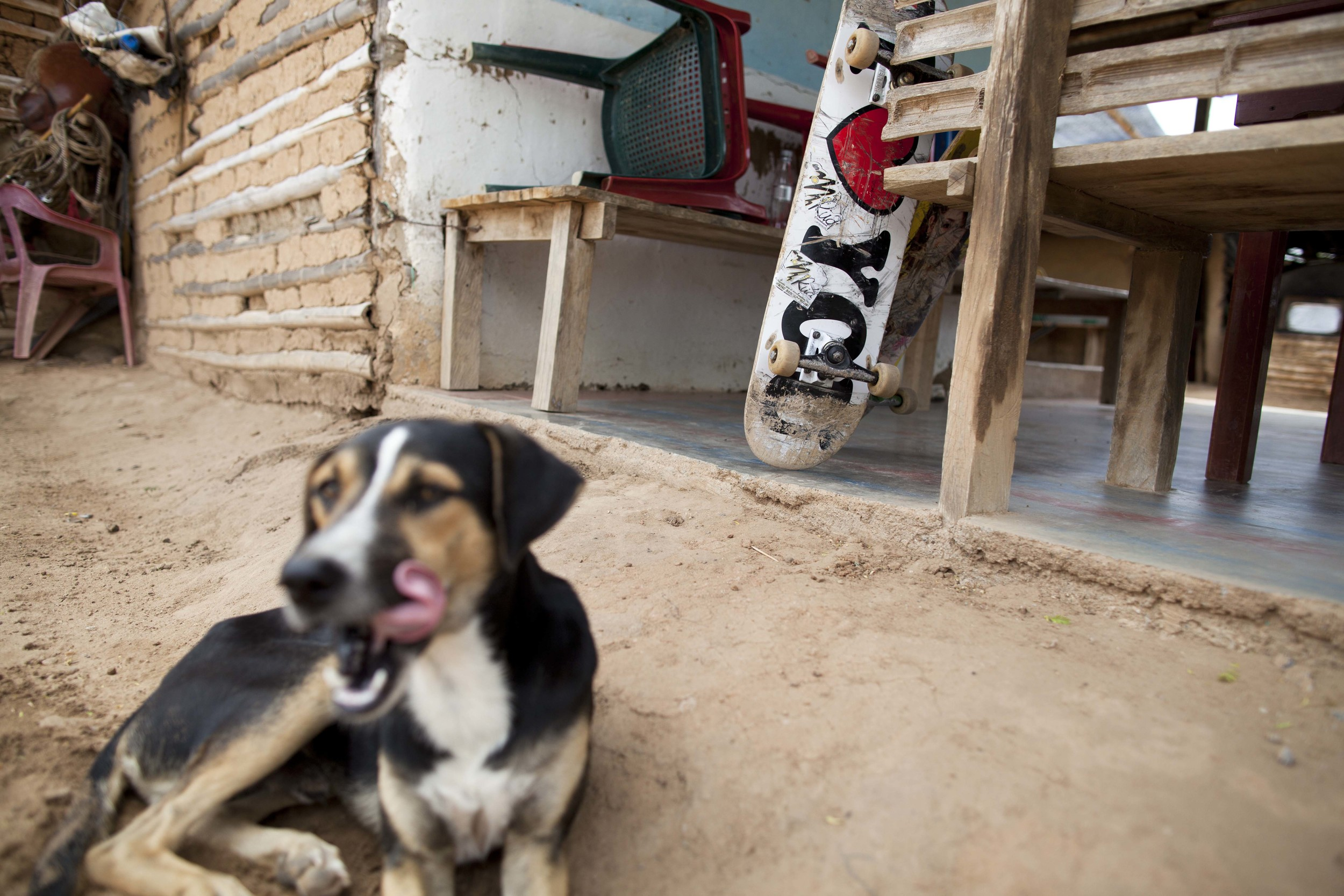 Tatacoa Desert. 31 July 2012. A dog and Felipe's skateboard at a makeshift shack in the desert.