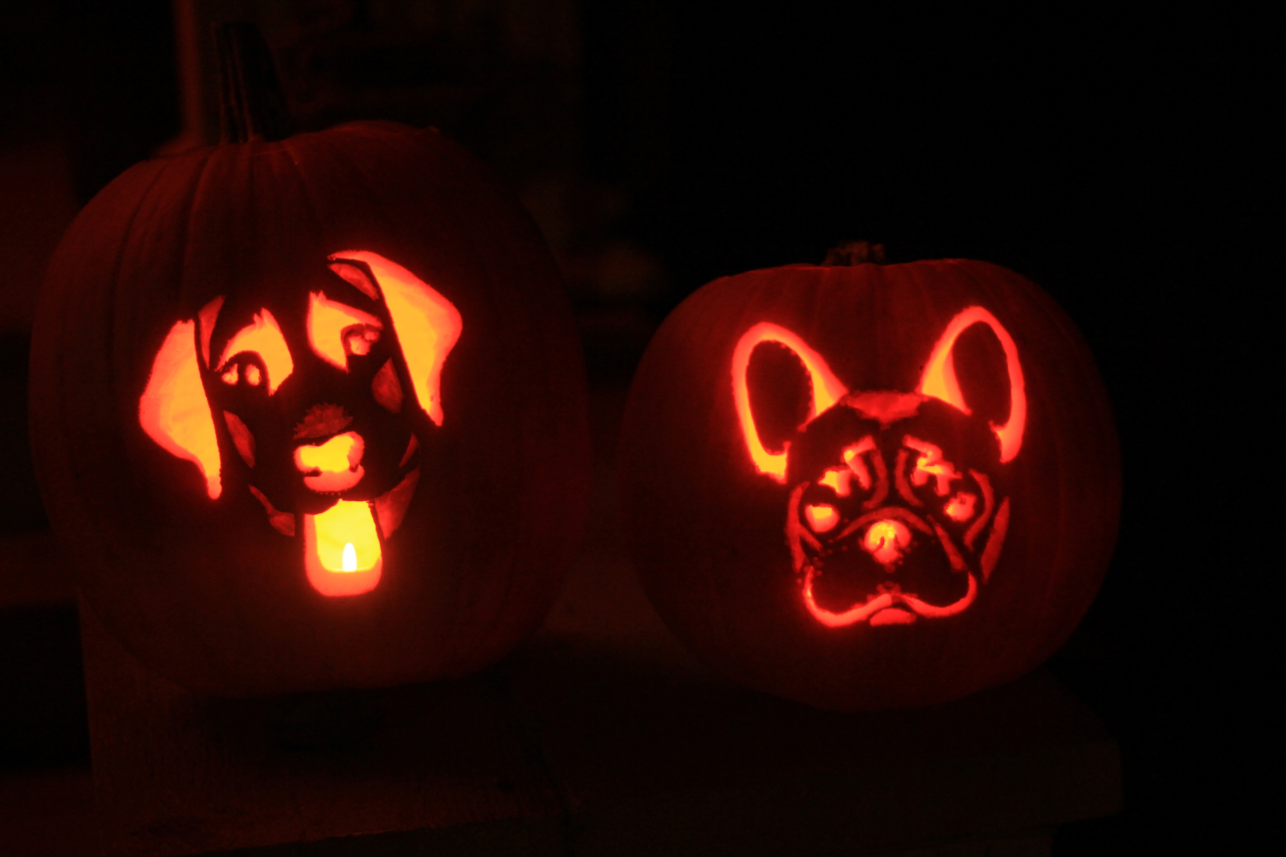 Bailey-Boo and Bam-O-Lantern