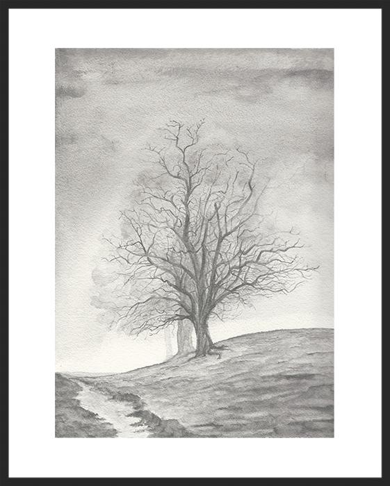 rachel_winner_graphite_watercolor_ballinger