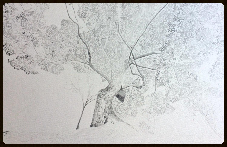watercolor graphite coming soon
