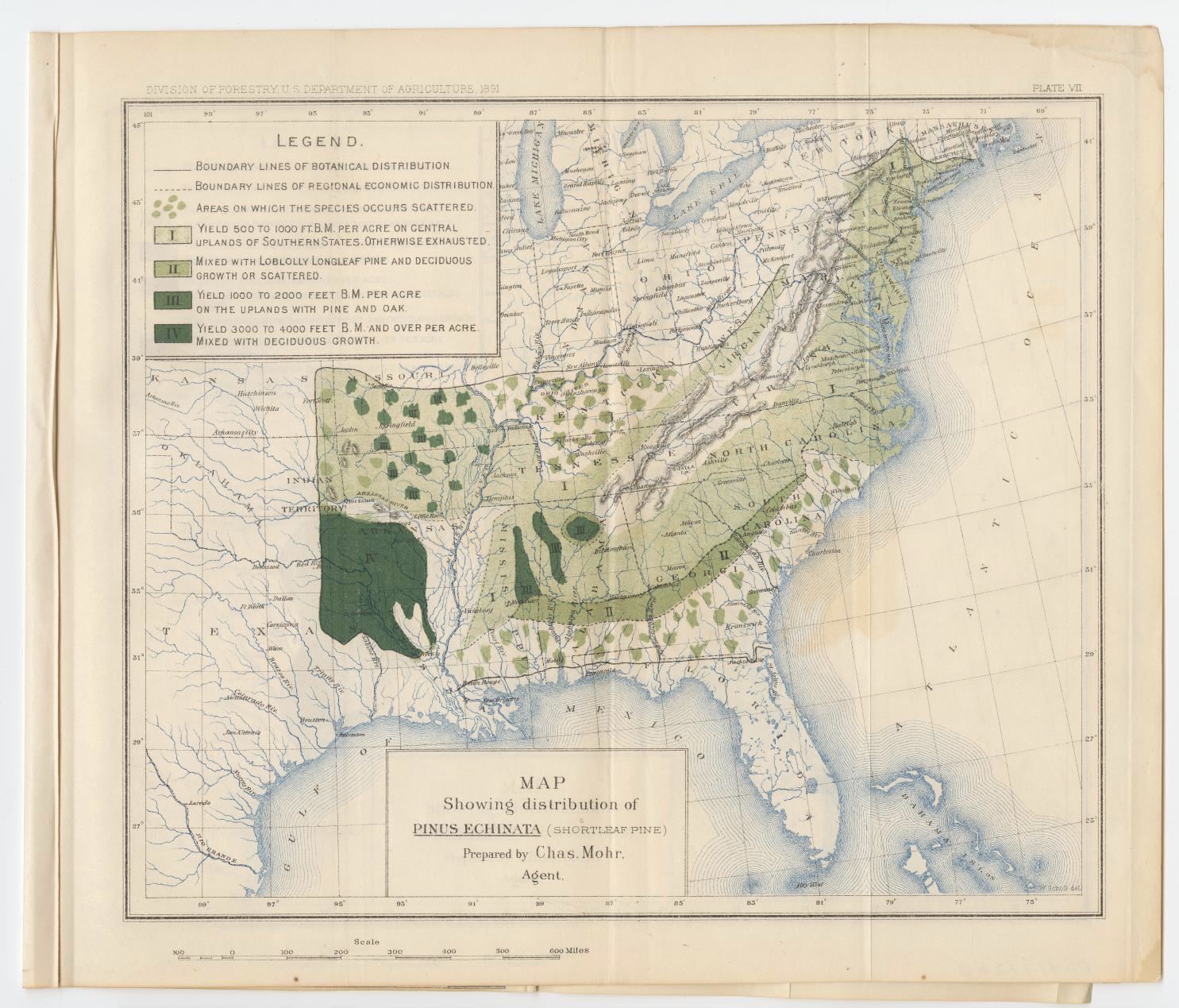 Map showing the distribution of Pinus Echinata (Shortleaf Pine) in 1891 by the Division of Forestry US Department of Agriculture