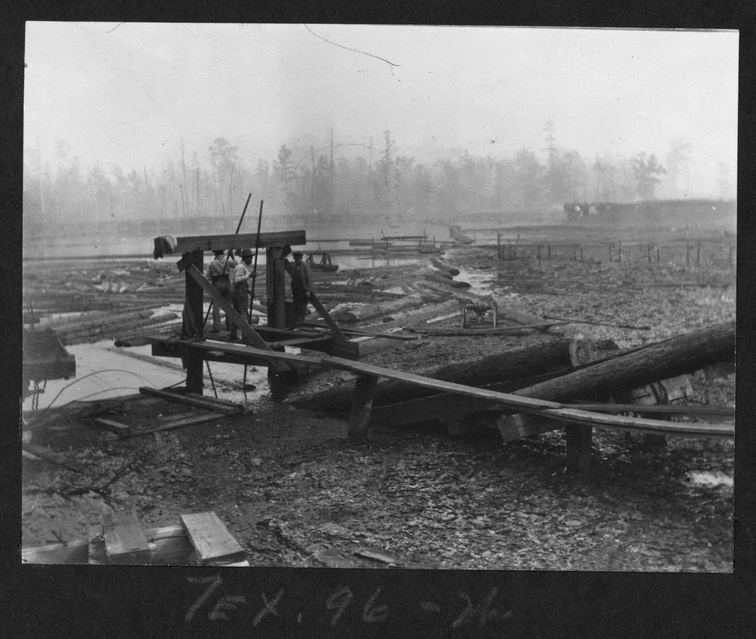 Tex96 Loading Logs onto the Endless Chain