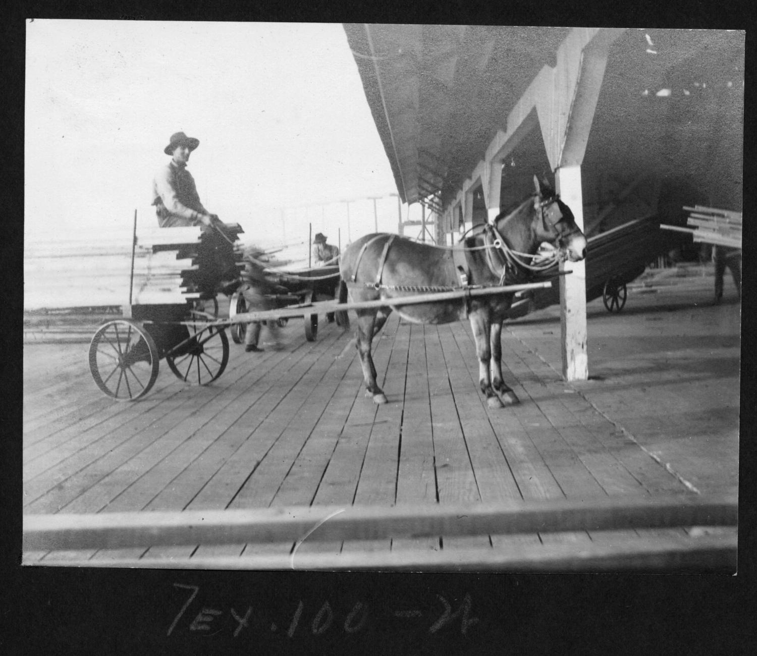 Tex100 Loaded Mule Drawn Lumber Cart at Mill Shed