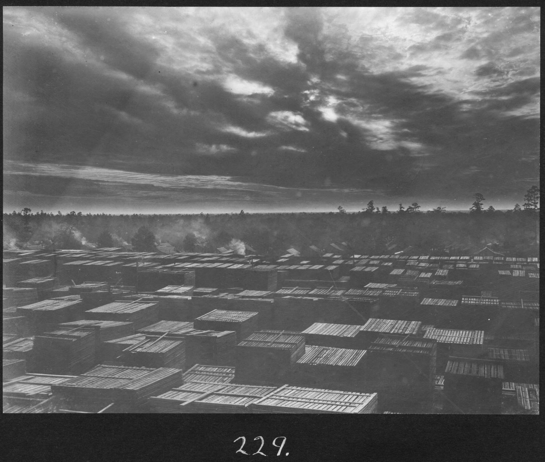 S. P. 229 Sunset Over the Lumberyard