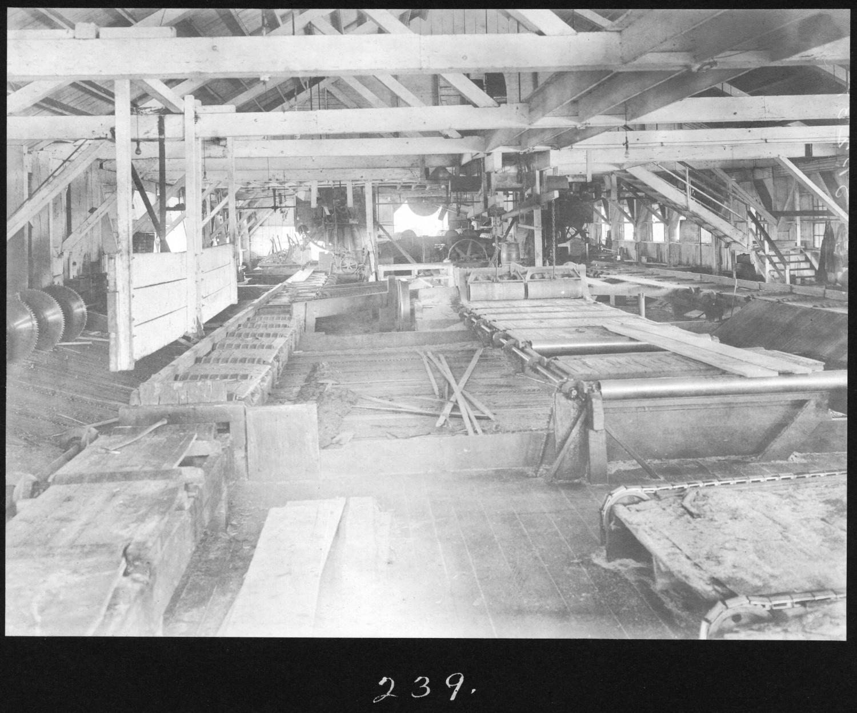 S. P. 239 Yellow Pine Sawmill Interior