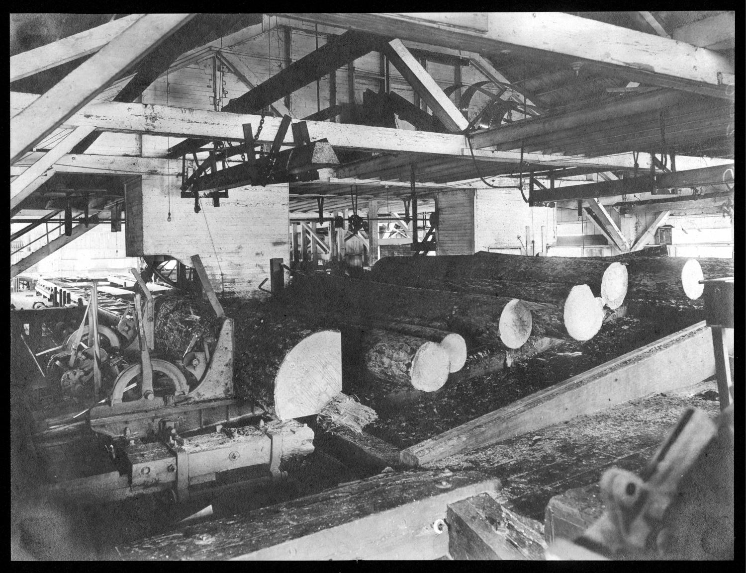 S.P. 240 Interior of saw mill from log end