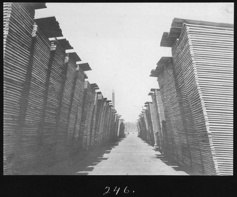 S. P. 246 Hardwood Lumber Alley