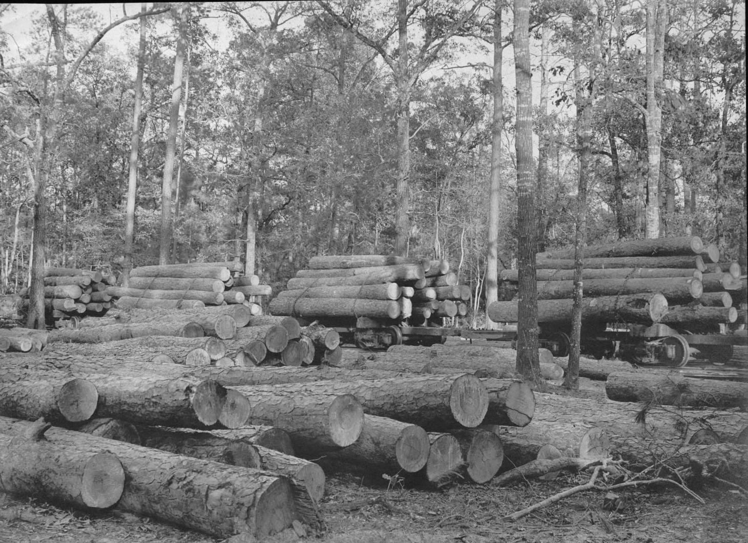 S. P. 322 Log Ramp and Log Cars