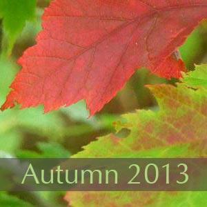 Autumn 2013 Newsletter