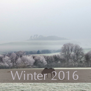 Winter 2016.jpg