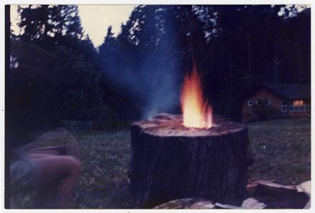 firelog72.jpg