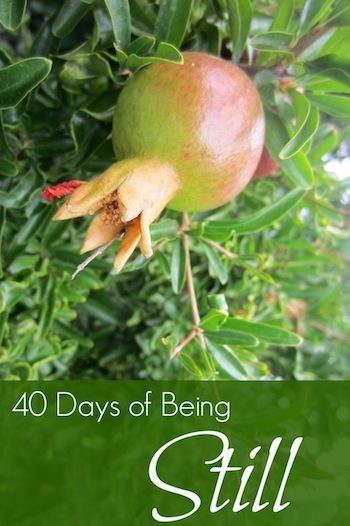 40-Days-Being-Still.jpg
