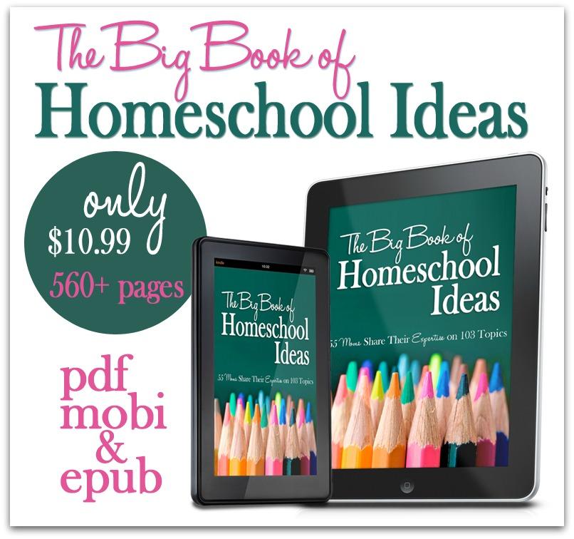 Big-Book-promo-1.jpg