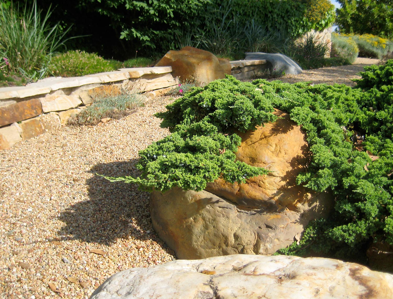Garden path with boulders and a low dry stack stone wall