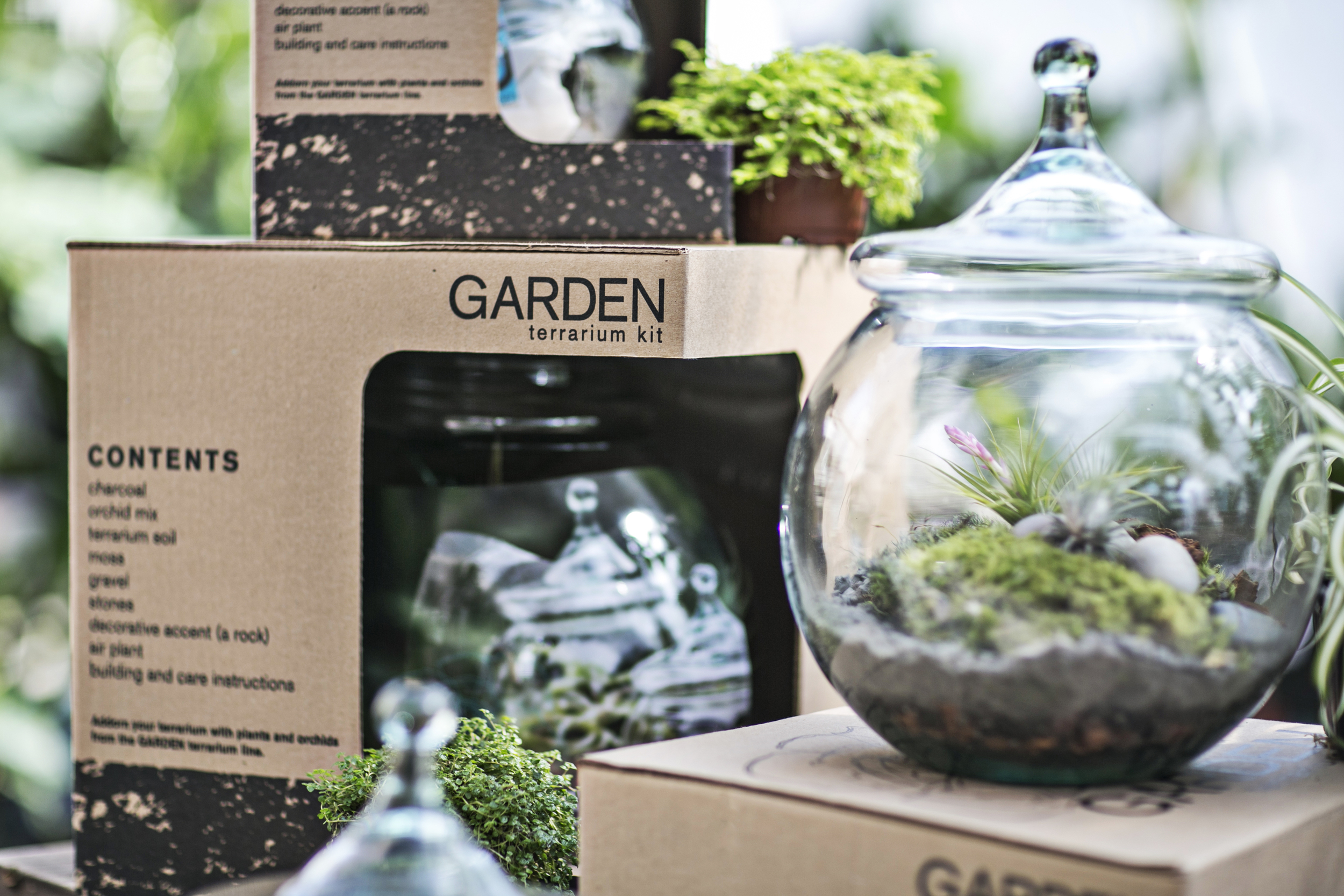 GARDEN terrarium kit design and development