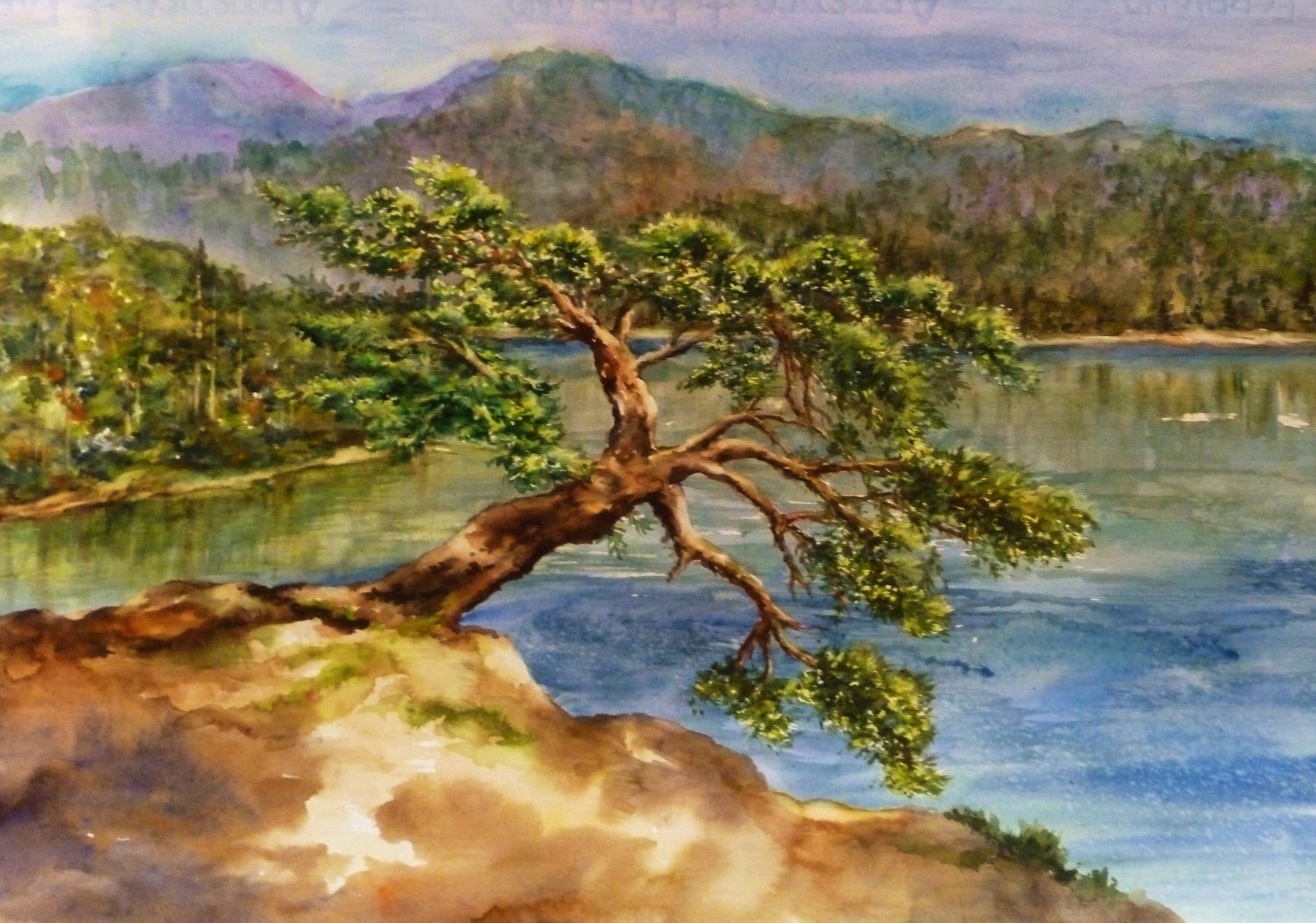 The Jumping Tree 14x22by Denise Cole.JPG